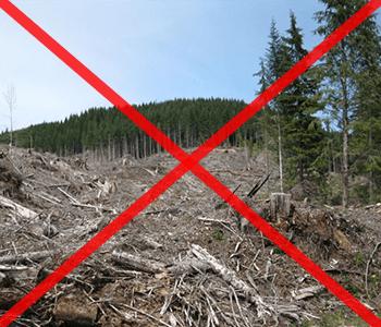 nincs több erdőirtás-ingyen fűtés napelemes fűtés